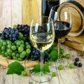 イニエスタの神戸移籍にワイン農場が絡んでるってどういうこと?