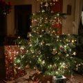 クリスマスツリーはいつ出す?いつしまう?の答えとレンタル事情